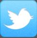 Rejoignez le blog Sun Créativ sur Twitter