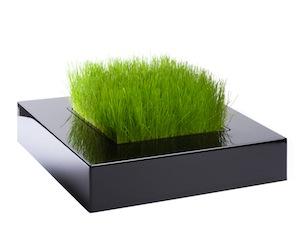 Vase carré design et tendance purifiant l'air